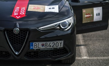 Alfa Romeo Stelvio Super_19