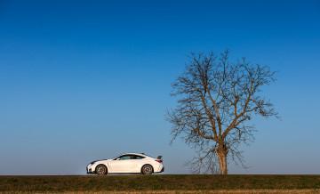 Lexus RCF TE foto_8